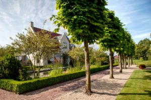 Sierbestrating gecombineerd met bomen en borders met vaste planten en struiken die zorgen voor een onderhoudsvrije tuin die zowel in de zomermaanden als wintermaanden een exclusieve tuin geeft