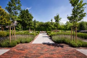 sierbestrating in een strakke tuin voor een modern lijnenspel wat sfeer en rust geeft in ieder tuinontwerp