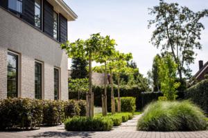 strakke voortuin voorzien van sierbestrating voor een onderhoudsvriendelijke tuin gelegen in Oudewater bij een nieuwbouw woning in de vrije sector. Tevens voorzien van exclusieve tuinverlichting voor een sfeervol geheel en veiligheid