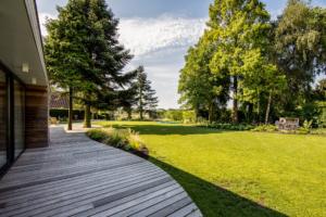strakke borders als aanvulling op een terras van tuinhout en groot gazon omgeven door schitterende grote bomen voor schaduw in een strakke tuin