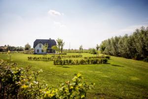 Een landelijke tuin die onderhoudsvriendelijk is en tevens daarmee ook een kindvriendelijke tuin met een groot gazon en vaste struiken en bomen in Oudewater, Linschoten, Benschop en Haastrecht. Het tuin ontwerp en tuinaanleg is verzorgt door Hoveniersbedrijf Brand te Oudewater
